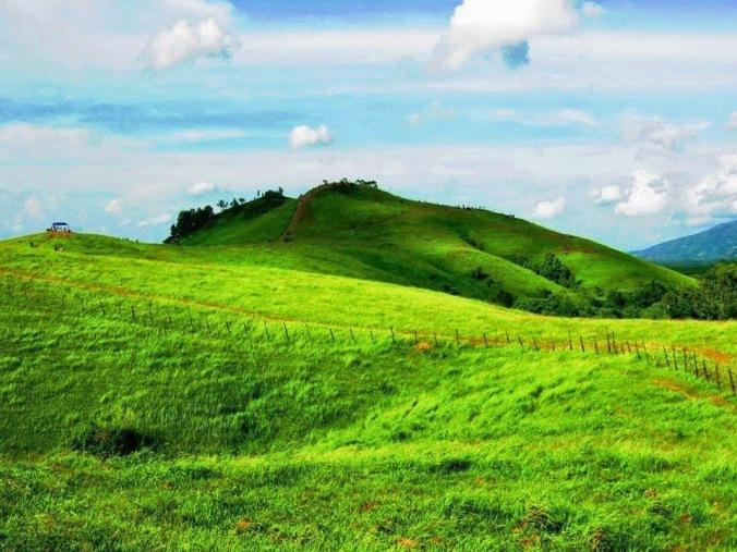 Padang Savana Bukit Rimpi